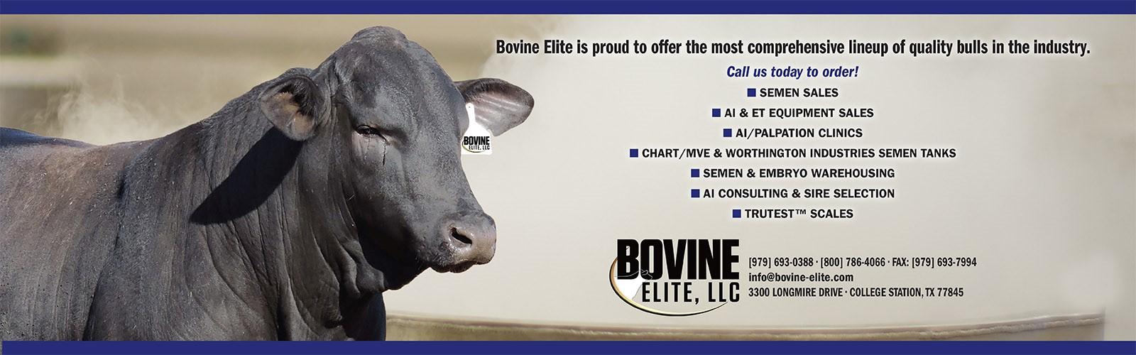 Bovine Elite, LLC